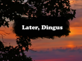 Later, Dingus
