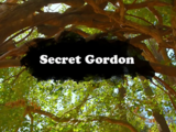 Secret Gordon