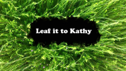 Leaf it to Kathy