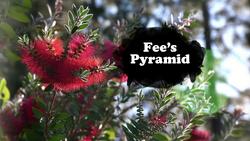 Fee's Pyramid