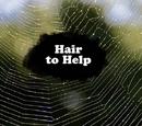 Hair to Help