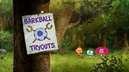 Barkball (1)