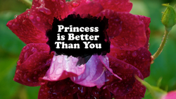 Princess is Better Than You