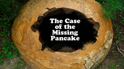 The Case of the Missing Pancake
