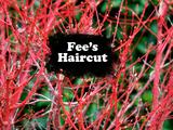 Fee's Haircut