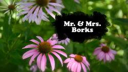 Mr Borks and Mrs Borks TC