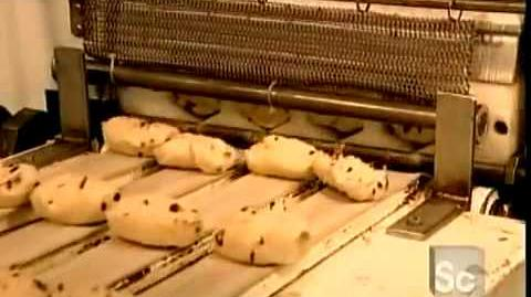 How Bagels are made