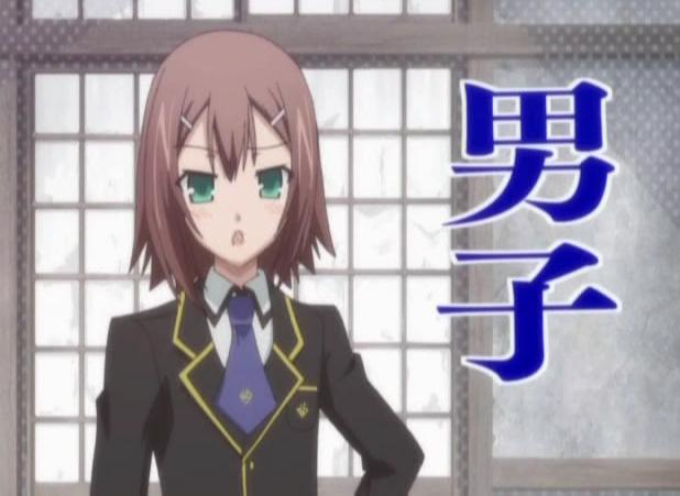 https://vignette.wikia.nocookie.net/bakatotest/images/2/24/1-1-hideyoshi_gender.jpg