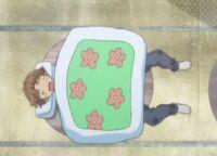 2-F aki table sleeps