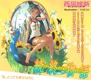 Zoku Owarimonogatari (novela)