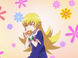 Koyomimonogatari Episode 09: Koyomi Torus
