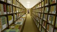 Bookstore inside 3