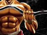 Baki (anime series)