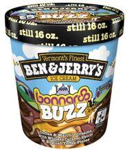 Ben-jerrys-bonnaroo-buzz-ice-cream-goes-national-1