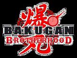 Bakugan: Master of Domains