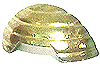 Hollow Metal Sole Gold