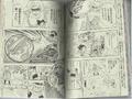 Stranger in the manga