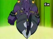 Hammersaur
