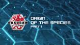 Origin of Species Part 1