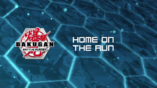 Home on the Run