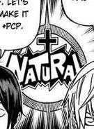 NaturalLOGO