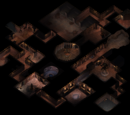 Spellhold Bodhi's Hunt Level 3