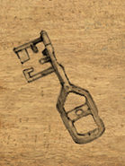 Odd Looking Key