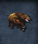 Grizzlymorph
