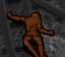 Joseph's Body