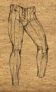 Pantaloons2
