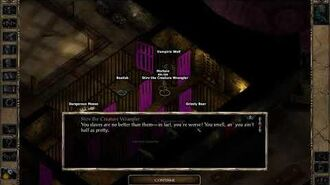 Greater Wyvern in Baldur's Gate The Black Pits II Legacy of Bhaal Solo Sorcerer training area