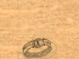 The Guard's Ring