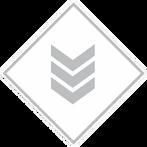 Vanguard Class Icon