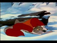 Jenna warming Balto
