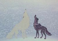 200px-Balto and the White Wolf howl