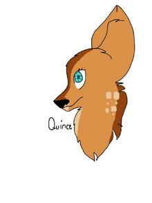 Ouince