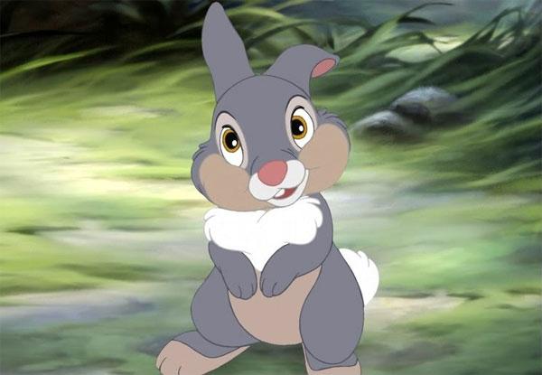 Klopfer Bambi