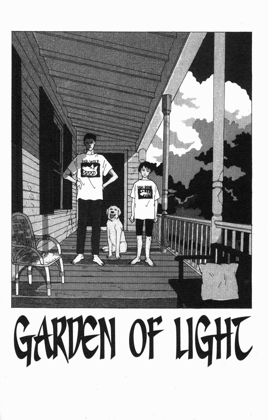 A story about garden lights (Chapter 1)
