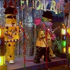 Rat As Elton Rat