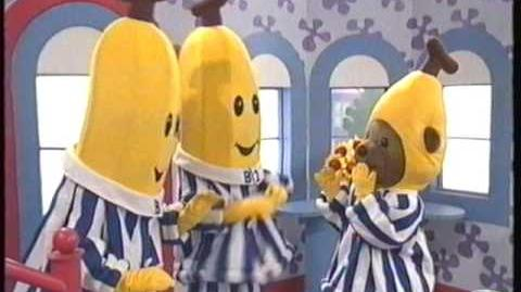 Bananas in Pyjamas - B3