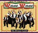 Anexo:Discografía de Banda Wane Wane