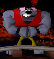 Koalakong1