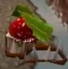 Растение-гренадёр 2