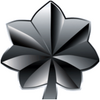 202-80px-lieutenant colonel insignia