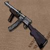 Gustloff Assault Rifle
