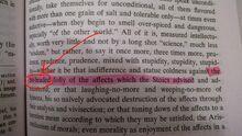 Nietzsche Writes of Hotheads Zoomed