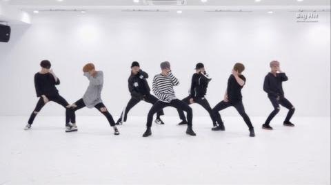 방탄소년단 '피 땀 눈물 (Blood Sweat & Tears)' Dance Practice