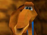Gobi the Camel
