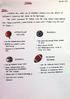 Kazoo Development Documents 07 - Sports
