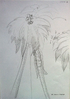 Kazoo Development Documents 19 - Big Jungle Treetops
